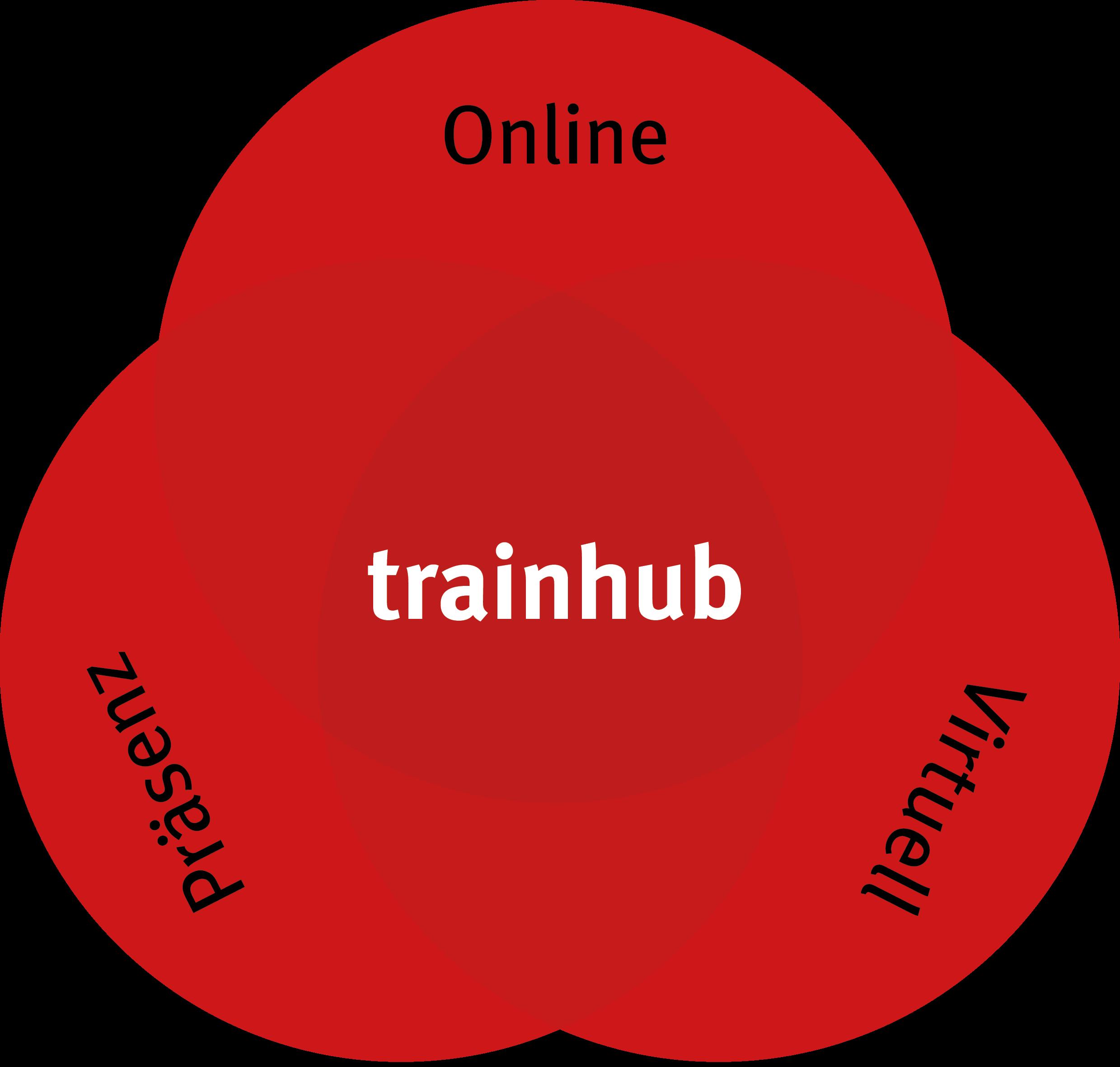 trainhub_Schulungsvarianten
